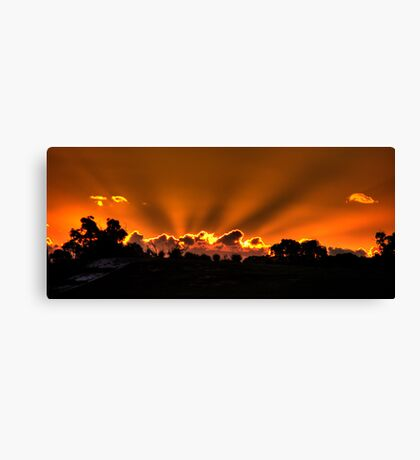Sunbeams, WA Canvas Print
