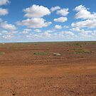 Sunlight on Gibber Country. Outback. by Rita Blom