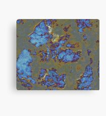 case hardened Canvas Print