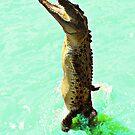Jumping Crocodile by JuliaKHarwood