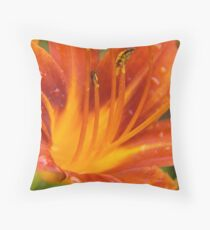 Summer in Olmsted Falls Throw Pillow