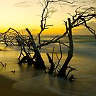 Days End by AMP  Al Melville Photography