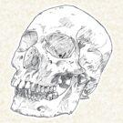 Skull Tee by Andre Gascoigne