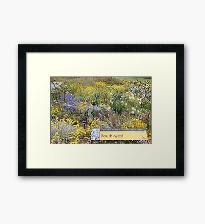 Wildflowers of the South West of Western Australia Framed Print