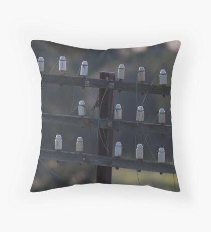 Broken web Throw Pillow