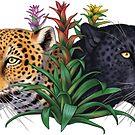 Jaguars and Bromeliads by Pip Abraham