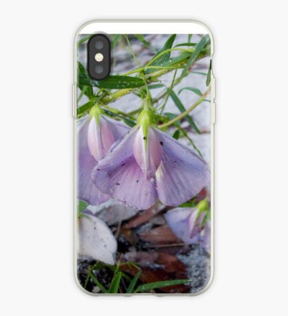 Butterfly Pea - a species of Clitoria iPhone Case