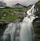 Haystack Falls, Glacier N.P., Montana by Rodney Johnson