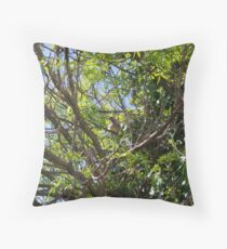 Wattle Bird Throw Pillow