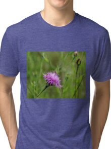 Bachelor's Button Tri-blend T-Shirt