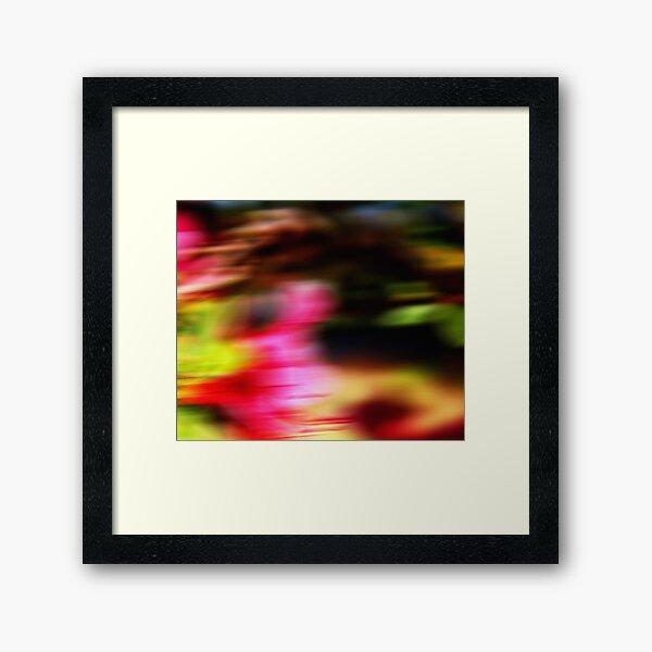 Summer Flutter Framed Art Print