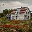 No One Home | New Brunswick by Amanda White