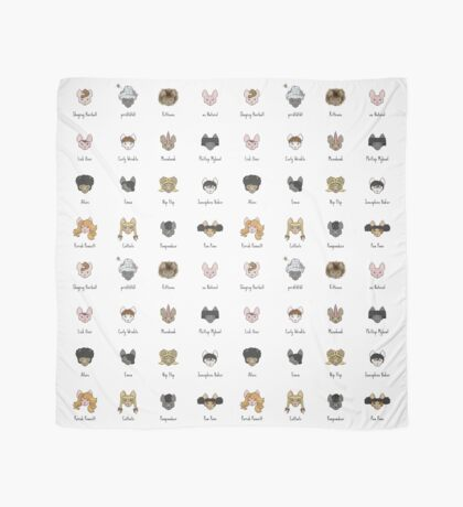 Let's Doo This [Trendy Hair Styles for Sphinx Cats] Scarf