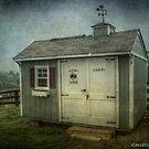 Mini Barn at Rising Hope by Christine Annas