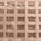 Sepia Reflections by Joan Wild