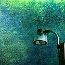 Street Light by Susanne Van Hulst