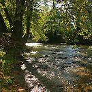 Upstream by Chelei