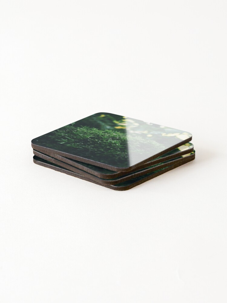 Alternate view of Moss pillow in the woods Coasters (Set of 4)