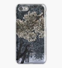Frosted pinetrees iPhone Case/Skin