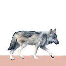 Wolf auf Erröten von Amy Hamilton