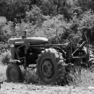 «Viejo tractor» de ValueEveryThing