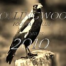 the Magpies grand finalist 2010,2nd attempt by dmaxwell