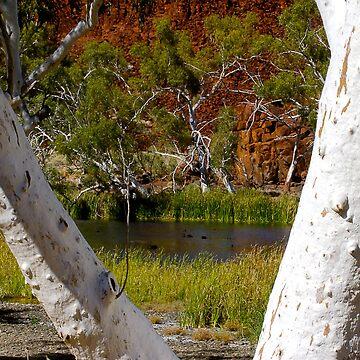 Harding Dam, Western Australia by JuliaKHarwood
