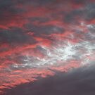 Red skies at night by Cathy O. Lewis