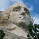 George Washington by DeBorah Davis, LMT