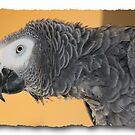 portrait of Oliver by deegarra