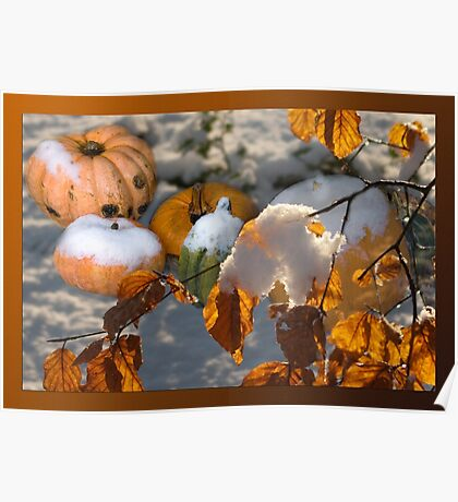 Pumkins in the snow Poster