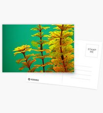 The World Is A Colorful Wonder ~ Part Five Postcards