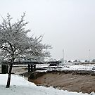Sea Mills Harbour in the Snow by funkybunch