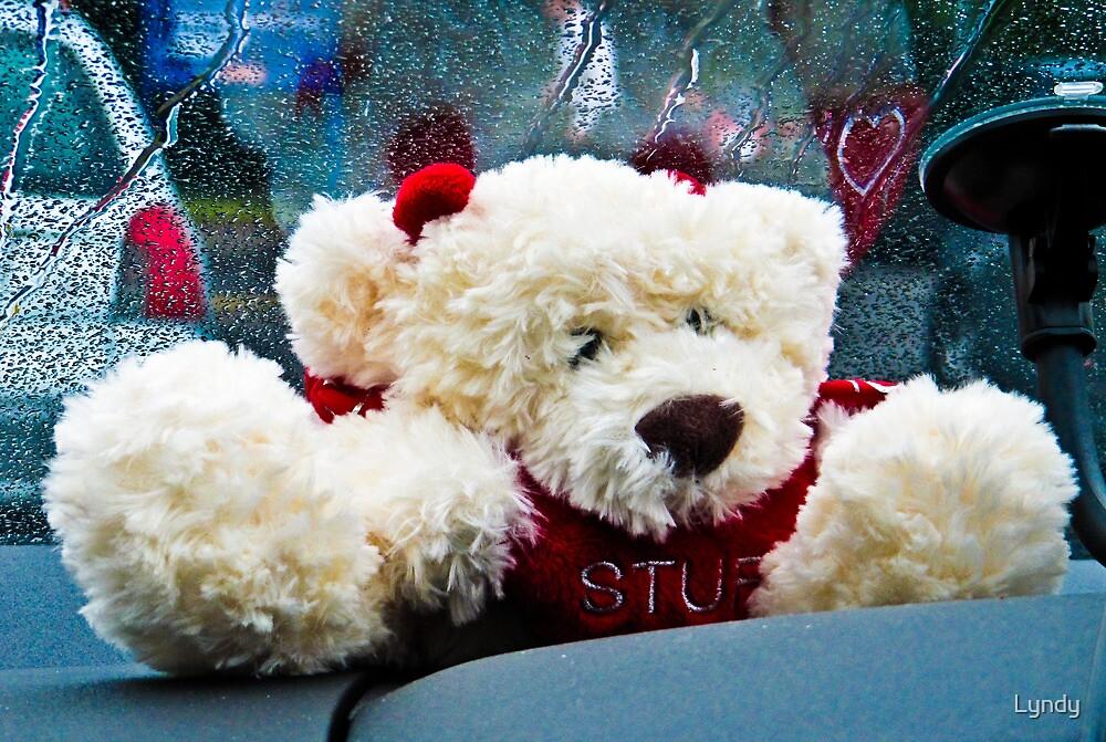 OOps I'm Stuffed! by Lyndy
