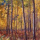 Golden Aspens, Colorado by Alex Cassels