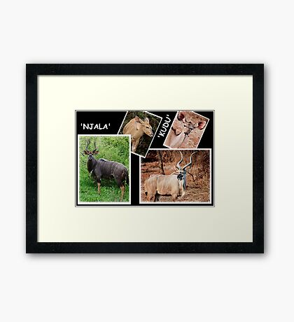 """A  COLLAGE OF THE """"NJALA"""" and the """"KUDU""""  Framed Print"""