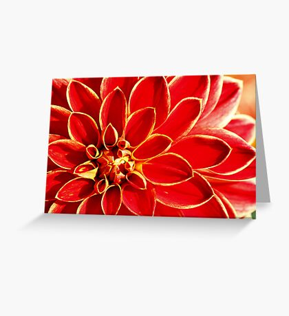 Dahlia, #3 Greeting Card