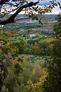 Fall is breath taking.... by Larry Llewellyn