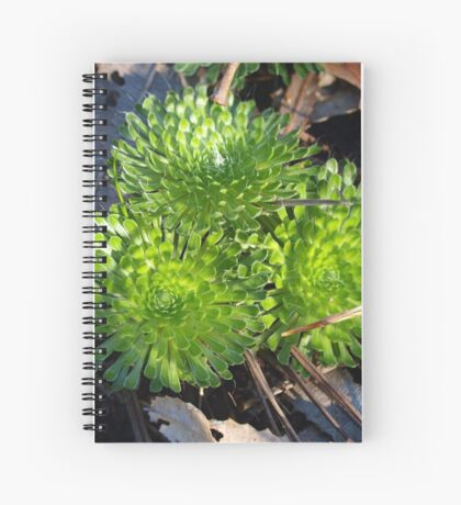 Greens Circles Spiral Notebook