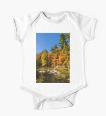 Impressions of Forests - Autumn on the Riverbank One Piece - Short Sleeve