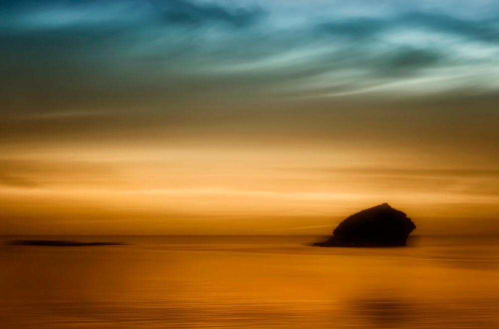 Gull Rock by chrisyfitzuk