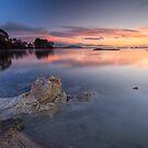 Lake Rotorua by Michael Treloar
