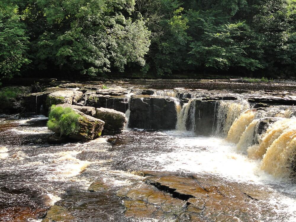 Aysgarth Falls by blackburns