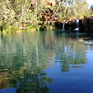 Fern Pool, Karijini by JuliaKHarwood