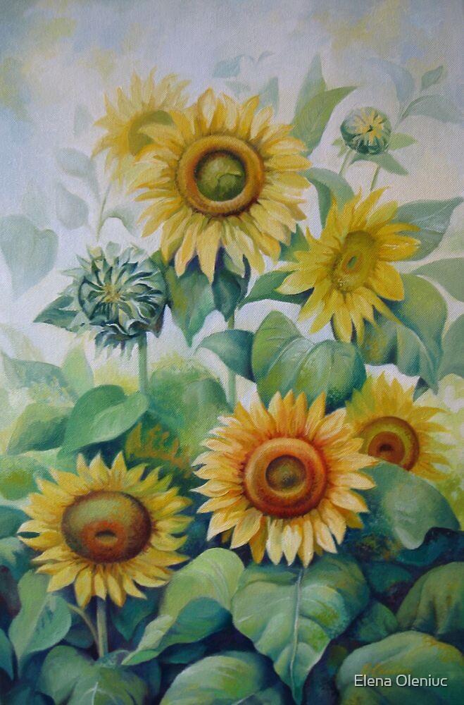 Summer day by Elena Oleniuc