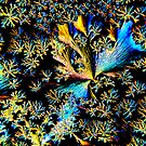 Photo Microcroscophy by owensdp1277
