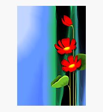 Amazing beauty of the red flowers Photographic Print