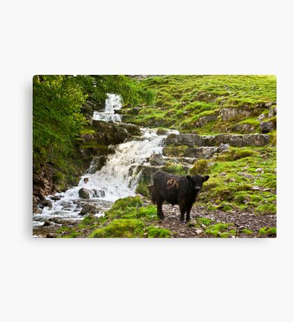 By the Waterfall Canvas Print