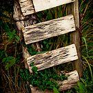 Rustic Gate by Jeanne Sheridan