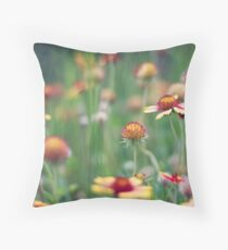 Indian blankets Throw Pillow